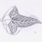 Der Herr der Ringe: Blattbrosche der Gefährten