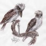 Vögel (I bis O)