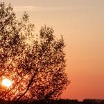 Sonnenuntergang (Greifswald)