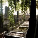 Jüdischer Friedhof (Halle (Saale))