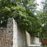 Stadtmauer (Neubrandenburg)