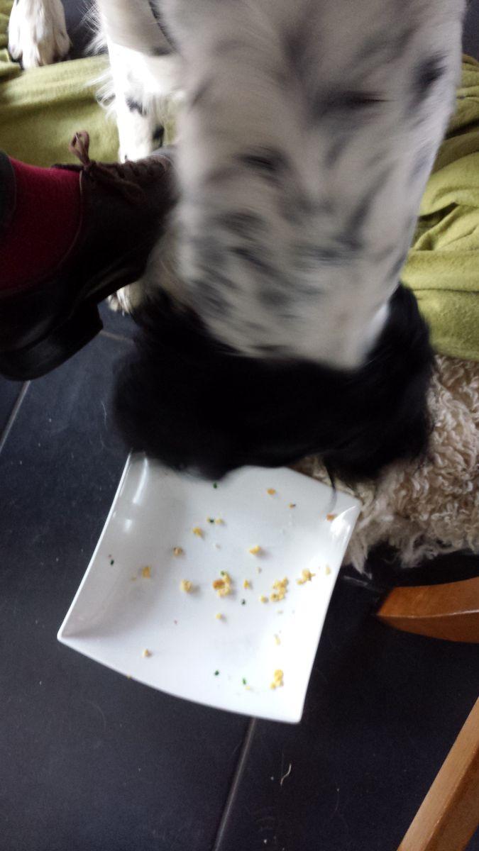 Léon putzt das Rührei weg
