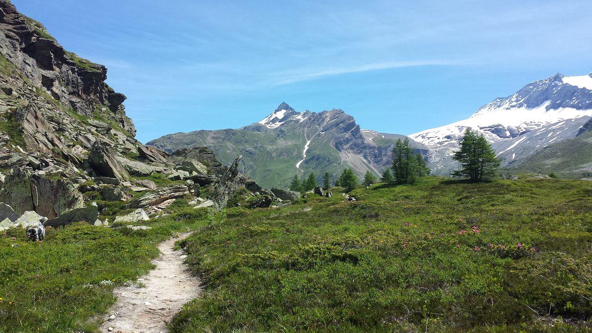 Blick von der Simplon-Alp